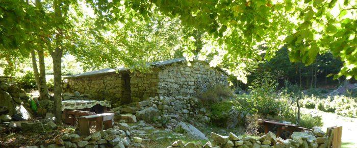 BERGERIES DE PORTETO à 1380 mètres d'altitude, sur une partie du  mythique GR 20, commune de Vivario, en Haute Corse du Sud