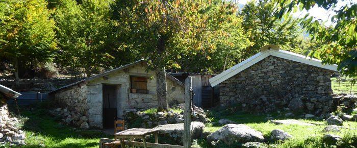 BERGERIES DE CAPIAGHJA à 1098 mètres d'altitude dans le massif du Monte Renosu, sur la commune de Bocognano, en Haute Corse du Sud