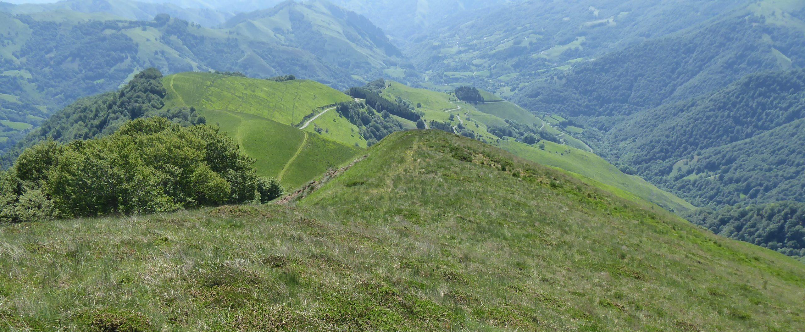 CRETE ET COL D'ORGAMBIDEXKA à 1438 mètres d'altitude, depuis le col de Bagargi à Iraty, commune de Larrau au Pays Basque.