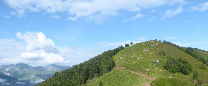CRETES D'ISSARBE à 1481 mètres d'altitude, sur la commune de Lanne en Barétous, vallée de Barétous, Pyrénées-Atlantiques
