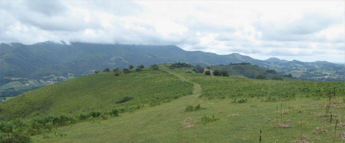 CRÊTES D'ANTZARAMENDI à 463 mètres d'altitude depuis Ahaice Mendi, sur la commune d'Ossès, Pays Basque