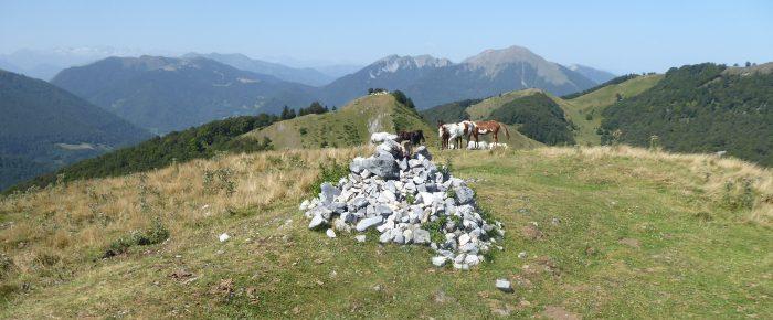 CRÊTE DE CORNUDERE à 1553 mètres d'altitude dans le massif d'Arbas, commune de Herran, Haute-Garonne